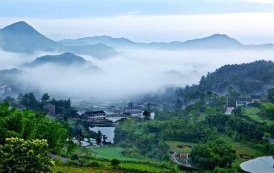 """宁波整治农村环境绘就""""诗意家园""""全民参与打造""""美丽乡"""