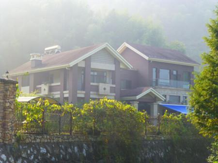 洋气两层平顶别墅