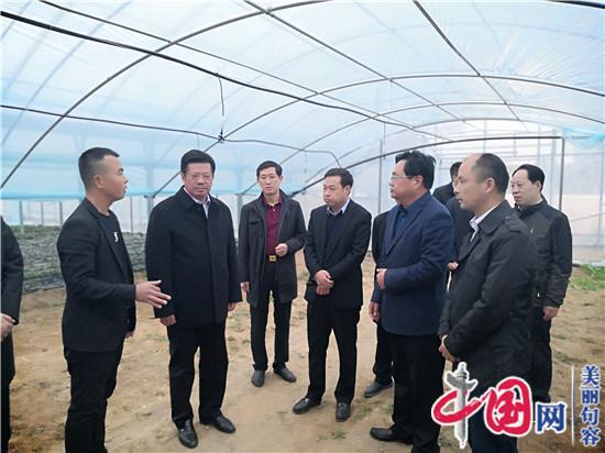 蒲城县双酒村规划图